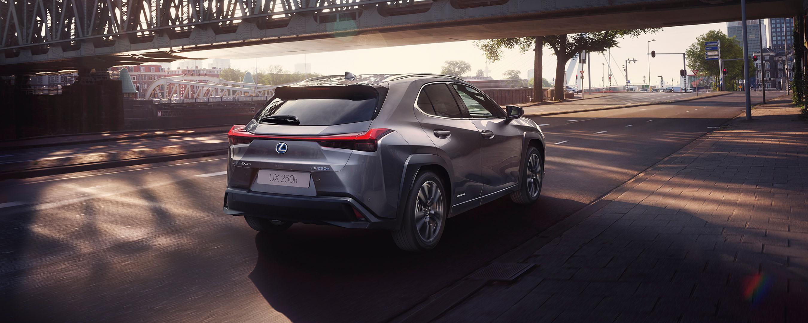 Lexus UX von hinten