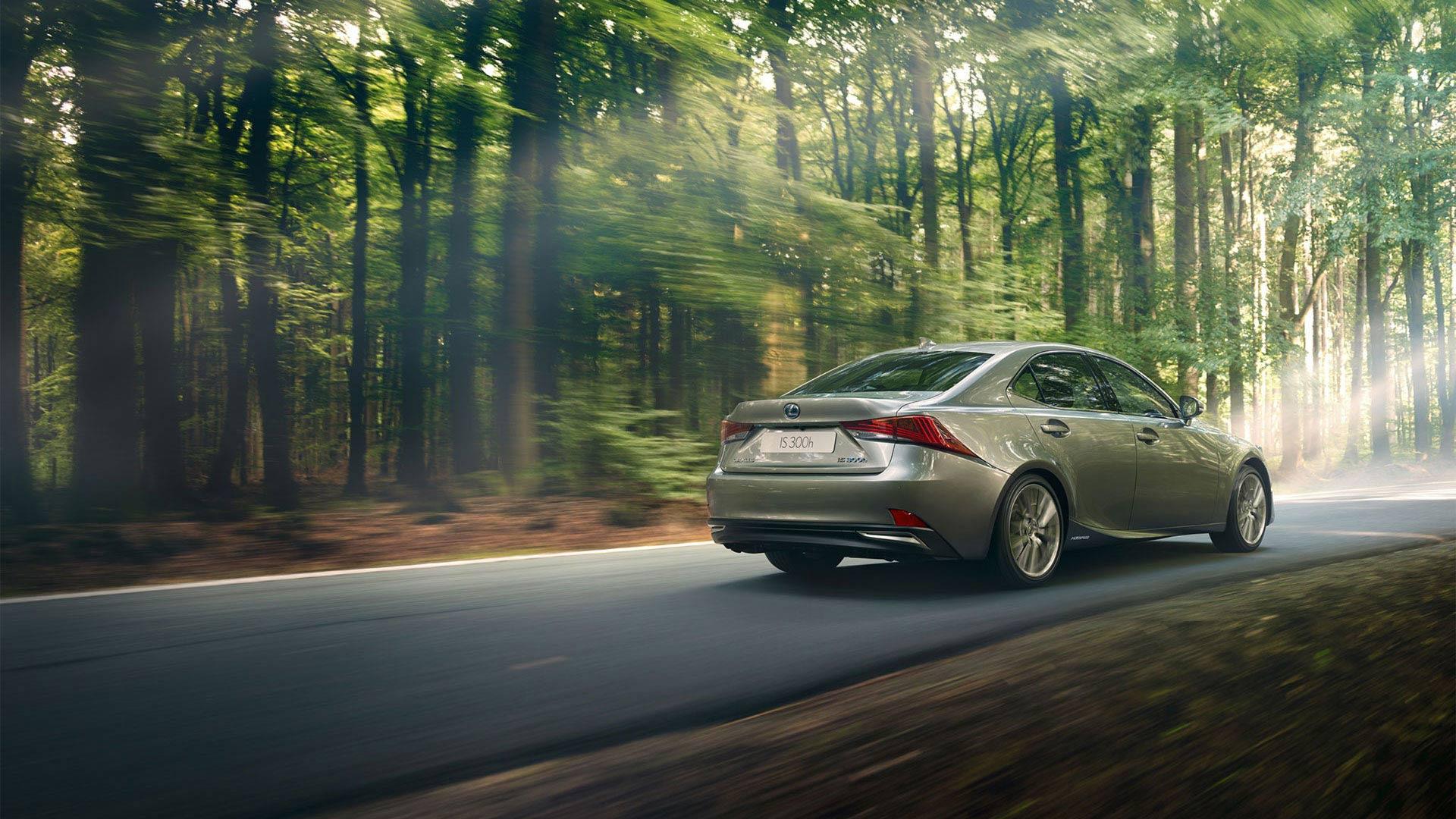Lexus IS 300h Hybrid 2019 grau Seitenansicht