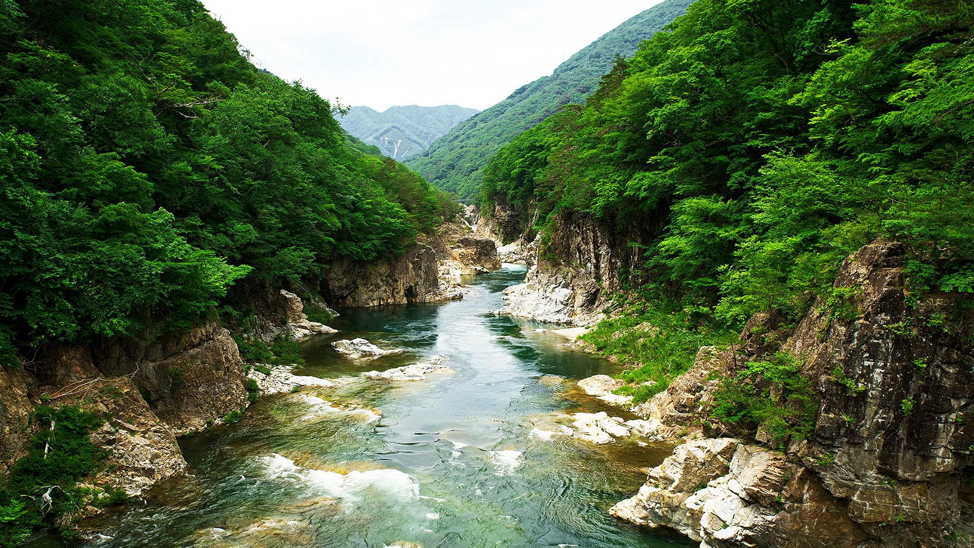 Parque Nikko hero asset