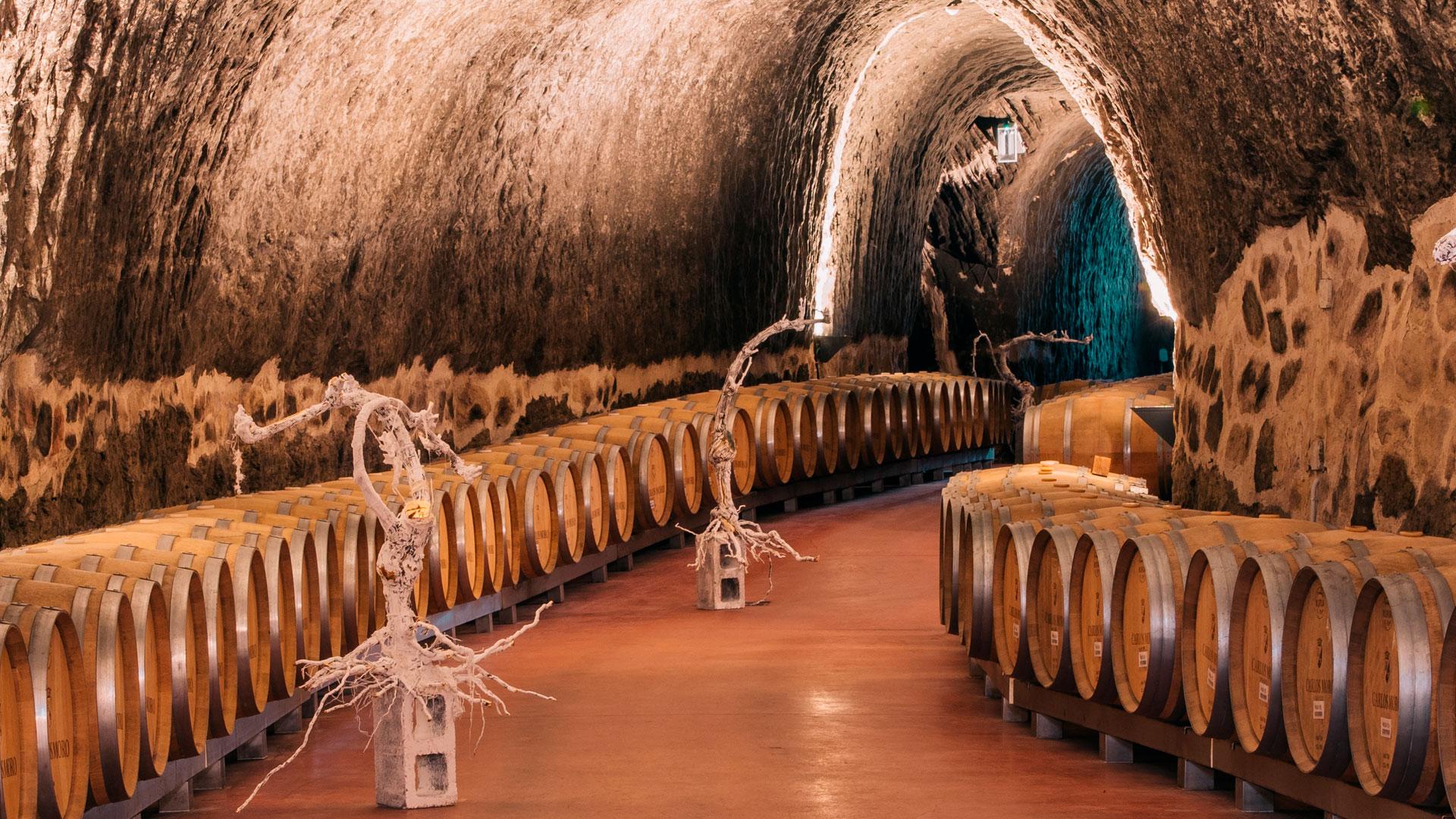 Imagen del interior de la Bodega Carlos Moro