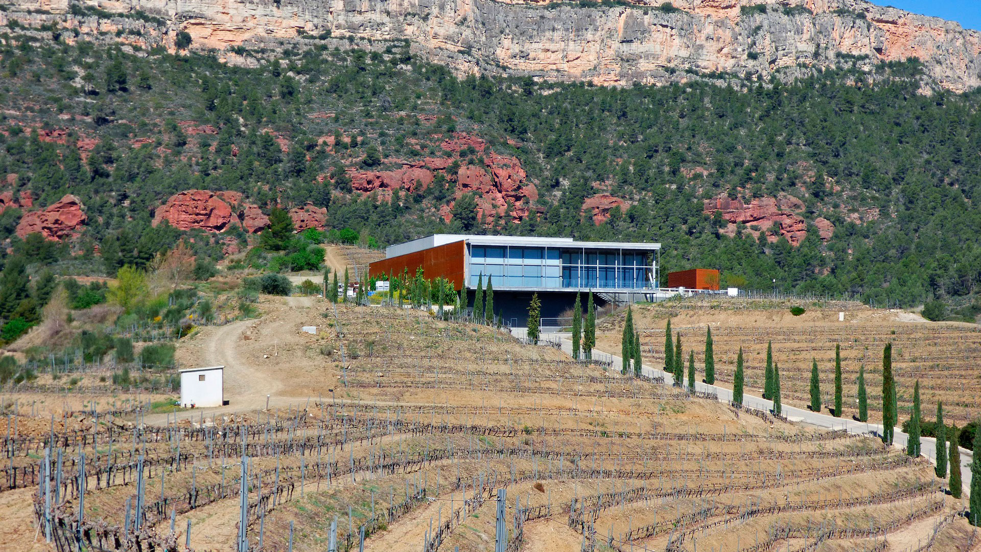 Imagen de Montsant en Tarragona