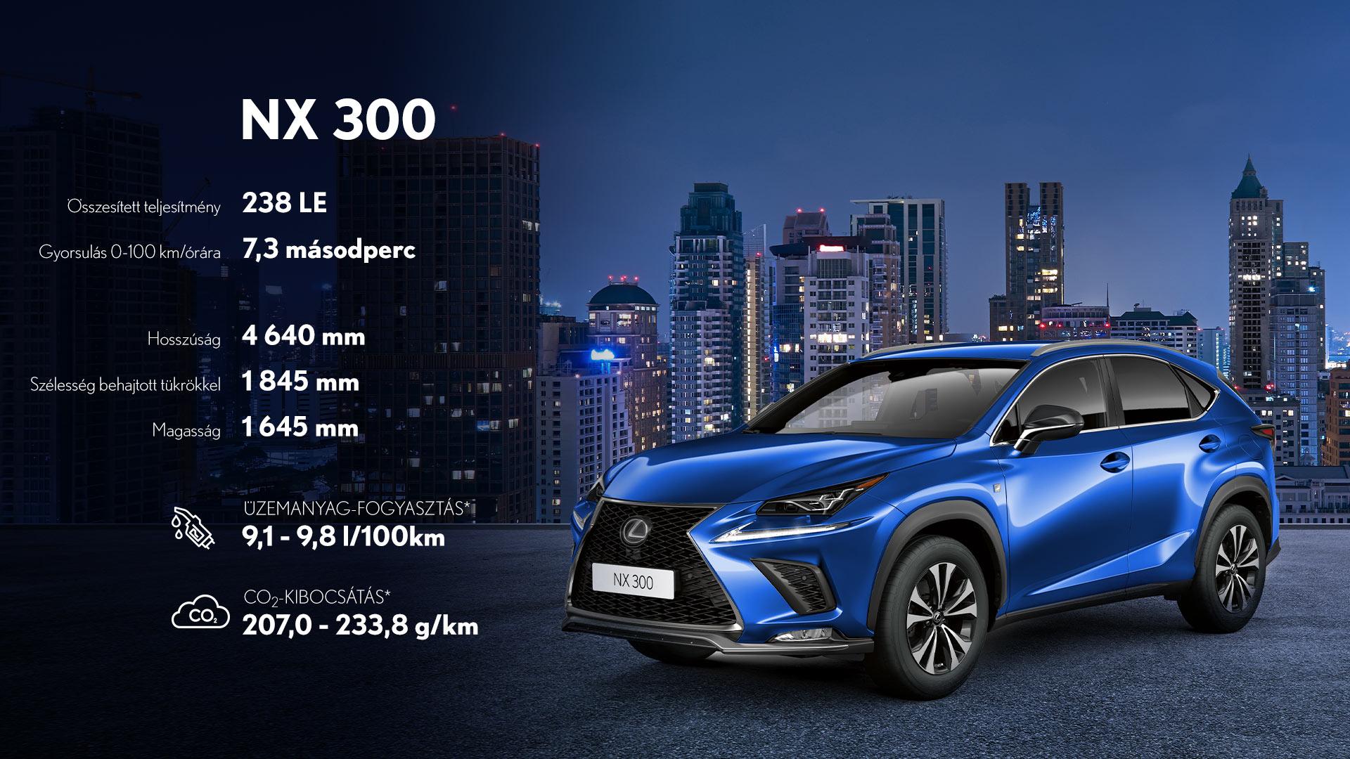 NX 300 spec