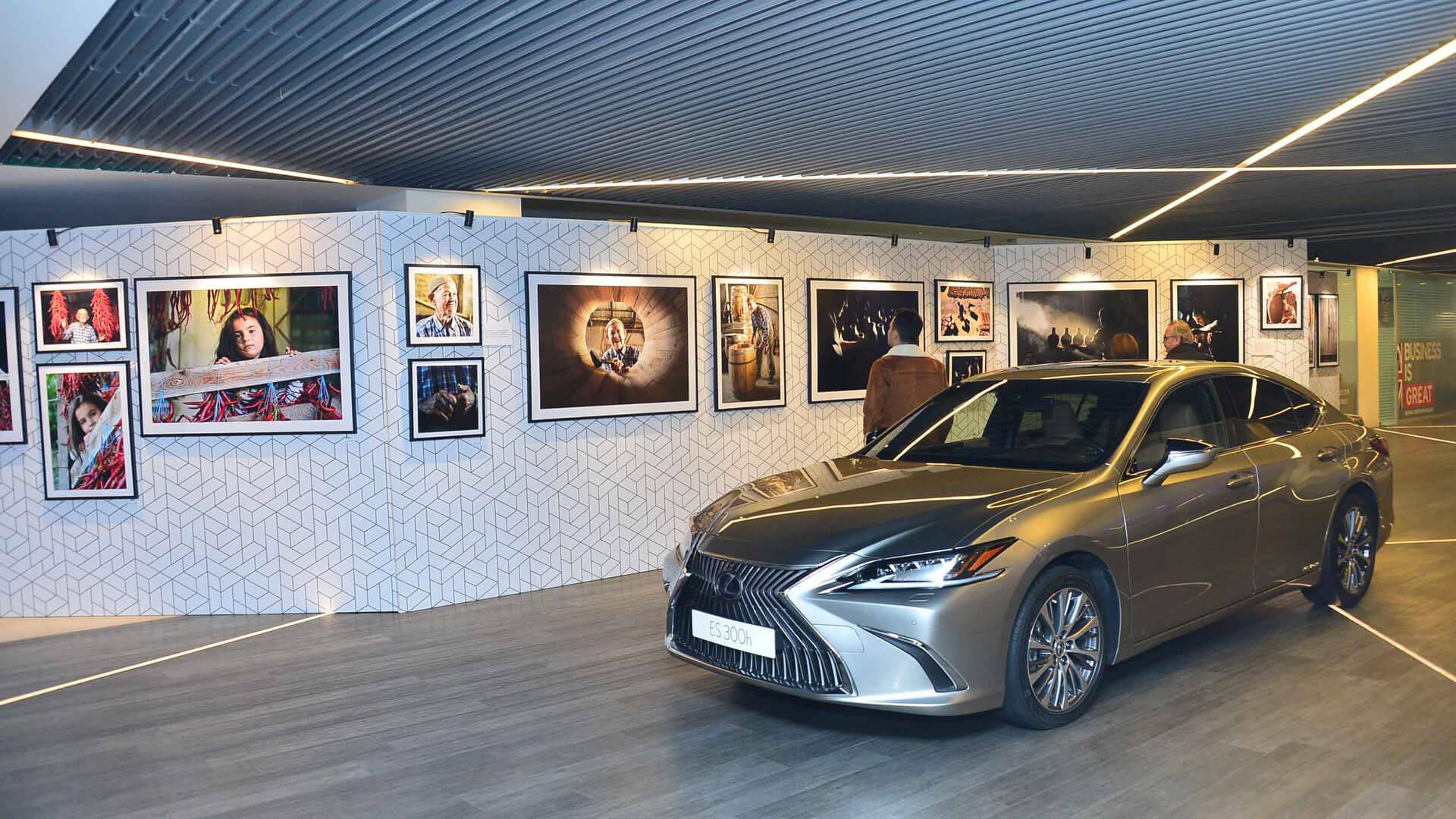 Lexus Fotograf Sergisi